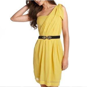 BCBGMAXAZRIA   Nevada Dress